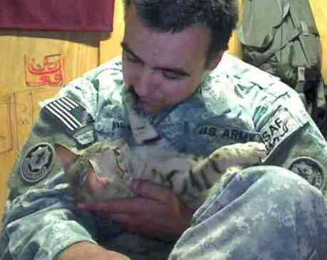 Koshka and Knott Together in Afghanistan (You Tube Image)