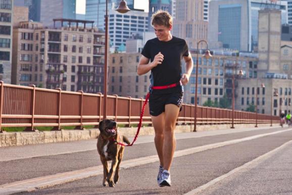 Stunt Puppy Stunt Runner Hands-Free Leash
