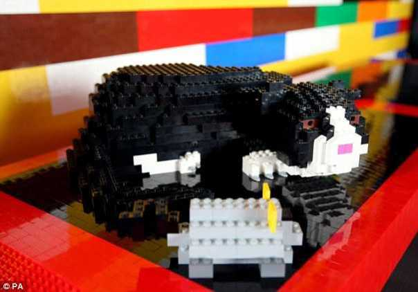 New Kittens On The Blocks: The Top 9 LEGO Cats | Petslady.com