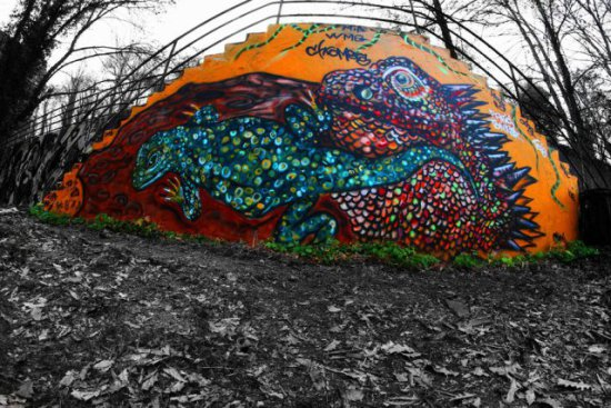 Lizard by Chromers: A couple of lizards painted graffiti style by Chromers