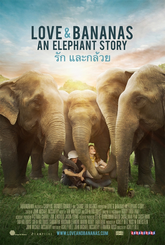 From A Horror Flick To A Horror Documentary, Filmmaker Saves An Elephant