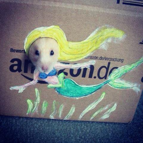 Mer-Hamster (Image via Philippine Mermaid Swimming Academy)