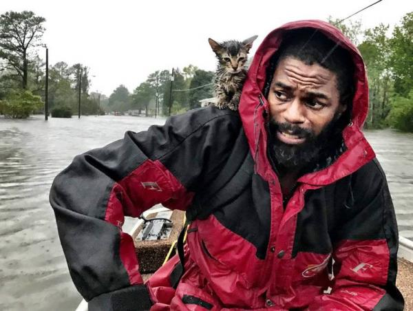 Man & Kitten Rescued From Hurricane Florence Flooding