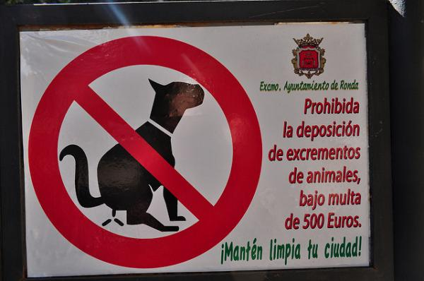 No Dog Pooping Sign Madrid Spain