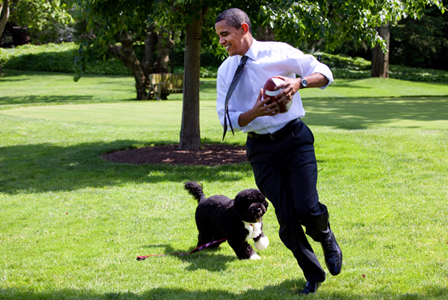 President Obama and Bo: Source: Sheknows.com