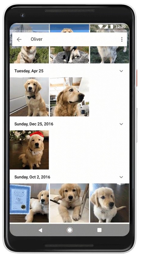 Dog and cat recognition on Google Photo