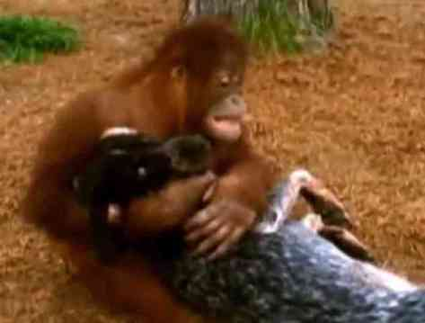Roscoe and Suryia (You Tube Image)