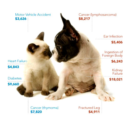 PetPlans estimated costs for various 'unexpected' vet visits: image via 1800PetMeds.com