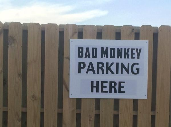 The Top 10 Pet & Animal Parking Signs