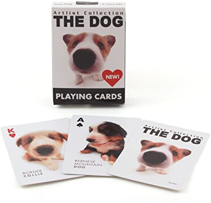 Dog & Cat Playing Card Decks For Self-Isolating Pet Owners
