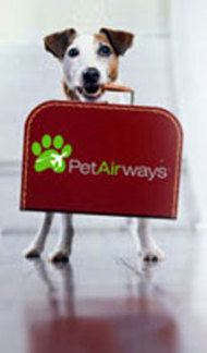 Pet Airways promotional image: image via petairways.com