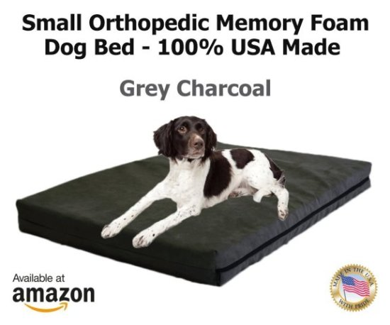 Pet Support Systems orthopedic bed comes in several sizes