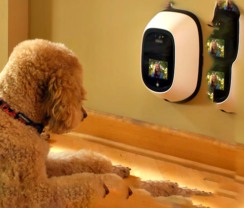 PetChatz two-way pet communication system