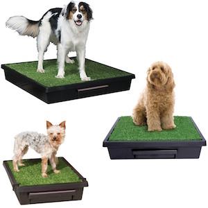 Pet Loo Dog Potties