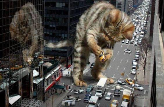 Catzilla Takes Manhattan (Image via Fugly.com)