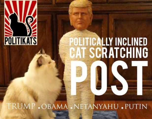 Politikats Cat Scratching Posts Trump All Others