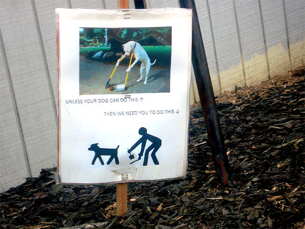 The Top 10 Dog Poop & Scoop Signs