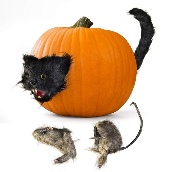 Cat and Rat Spooky Pumpkin Props