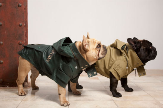 All-weather dog coats by Trendy4Paws: ©Trendy4Paws