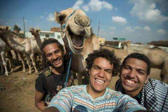 Camel Photo Bomb (Image via Ranker)