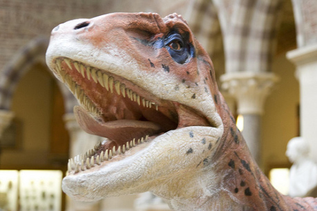 Utahraptor: (Photo by Jazza2 /Creative Commons via Flickr)