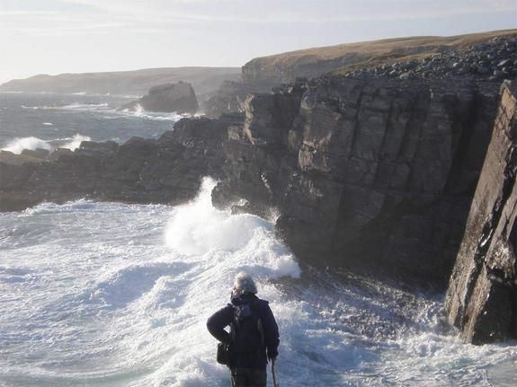 Mistaken Point Ecological Reserve: Credit: Oxford University, Martin Brasier, via livescience