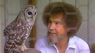 Bob Ross with Hoot All Grown Up