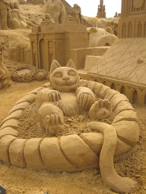 A New Meaning for the Cat's Sand Box
