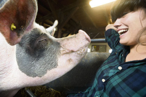 Sproot designer, Beatrijs Voorneman, plays with a farm pig: Photo: Tomas van Dijk