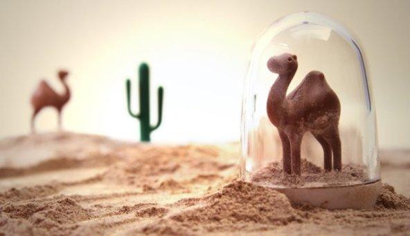 Camel Spice Shaker