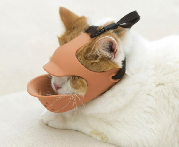 Soft Safety Muzzle Secures Snappy Short-Snouted Dogs & Cats
