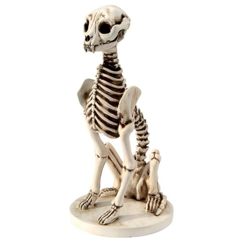 Skel-E-Cat Skeleton Cat Statue