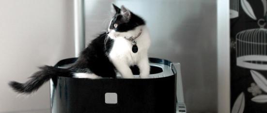 ModKat: Cats love the privacy of this litter box!: image via ModKo.com