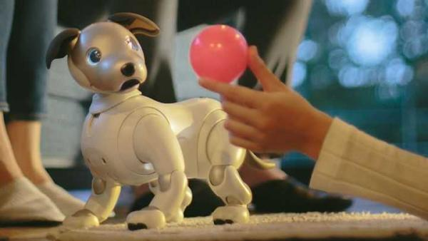 No Cheap Return For SONY's AIBO Robotic Pet Dog