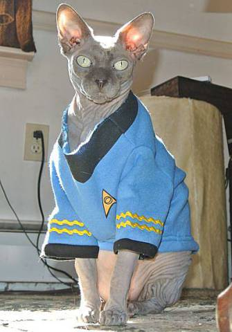 Star Trek Spock Hoodie