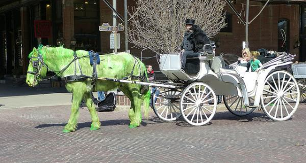 St. Patrick's Day green horse