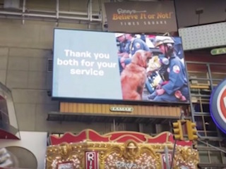 Bretagne Honored at Times Square: image credit: BarkBox