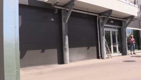 Nesting Norwegian Swallows Master Motion-Detecting Garage Door