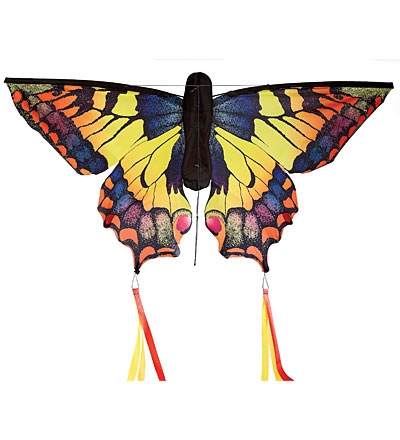 This great Swallowtail Kite will send you soaring!