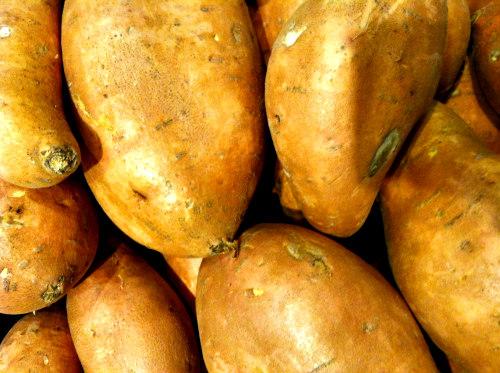 Turkey Jerky Pet Treats: Sweet potatoes are wonderful ingredients for pet treats