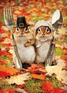 American Gothic -- Chipmunk Pilgrim Style (Photo via Pinterest)