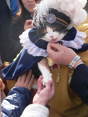 Tama, the Super Stationmaster (Photo by Takobou/Creative Commons via Wikimedia)