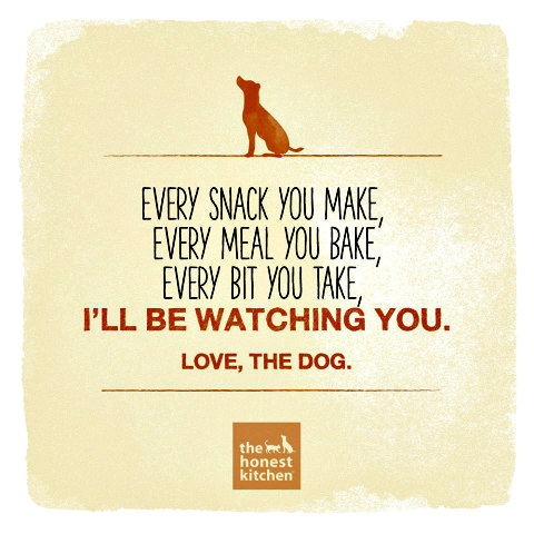 Natural Pet Food Choices: (image via The Honest Kitchen Facebook)