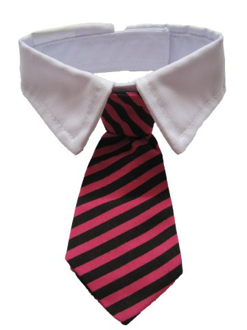 Necktie for Dogs and Cats