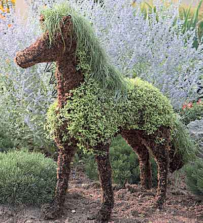 Amazingf Mossed Horse Topiary for Your Garden