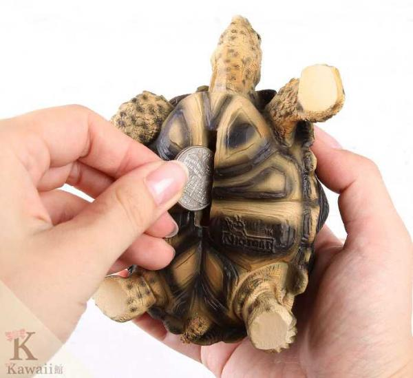 Indian Star tortoise coin bank