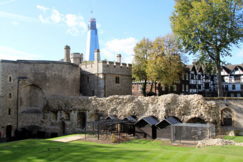 The raven pens at the Tower of London