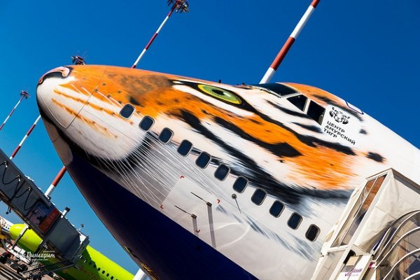 Russian Airline Promotes Siberian Tiger Conservation In A BIG Way