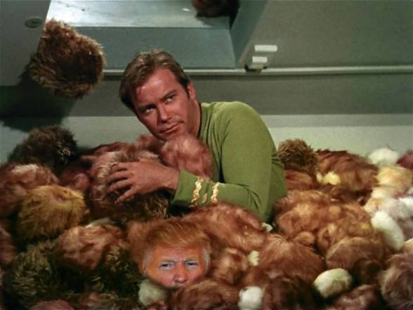 Find the Trump among the Tribbles (Image via Faceboo)