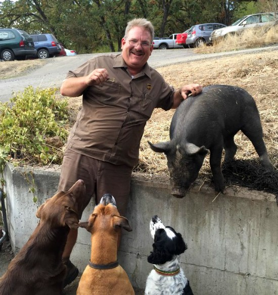 UPS driver and Miss Porkchop the pig